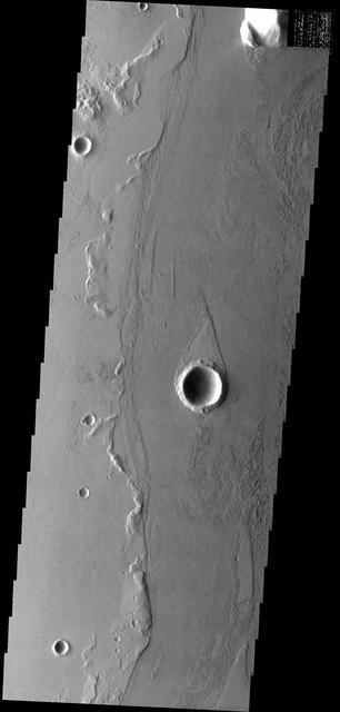 Marte Vallis