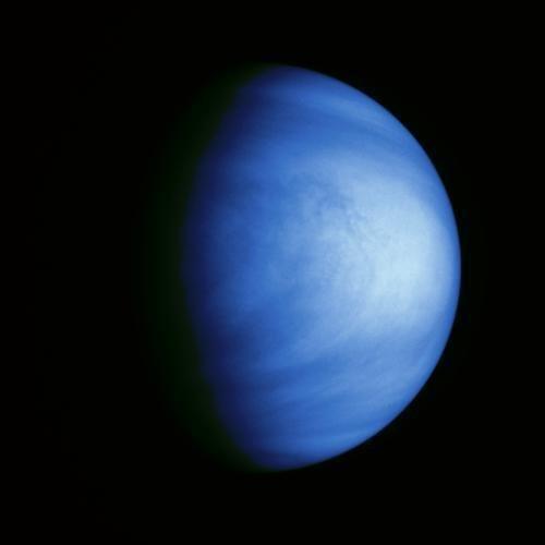 Nori colorati Venus